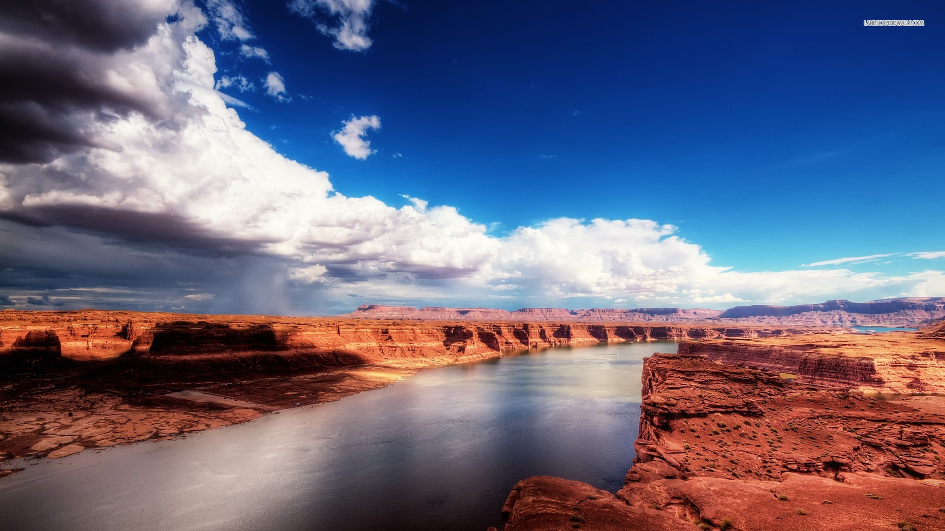 Image result for RIVERS IN THE DESERT